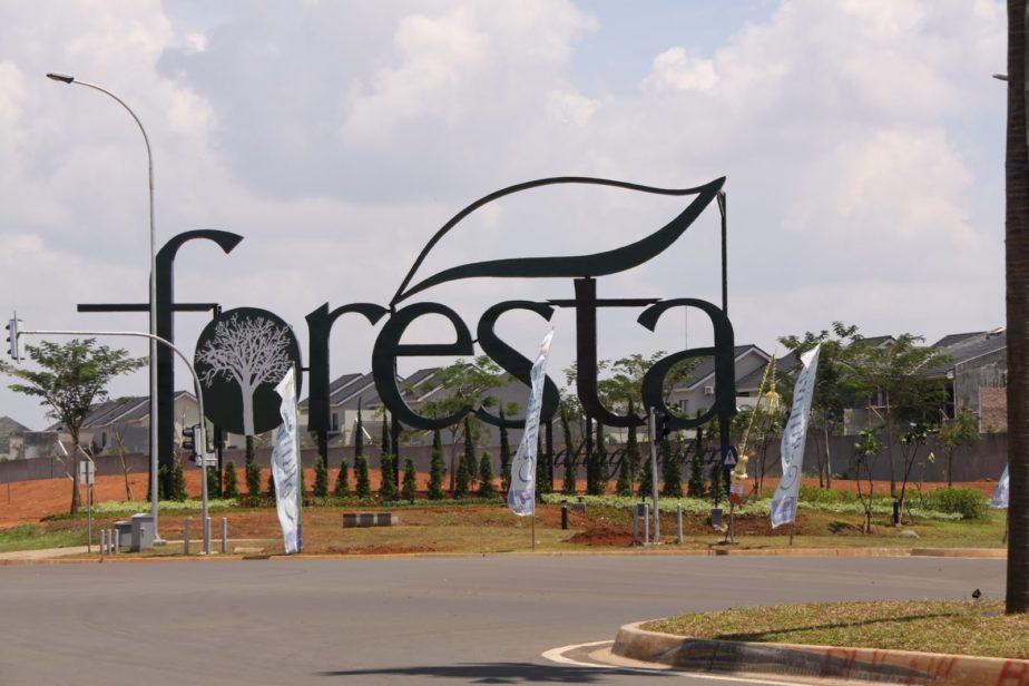 Cluster Foresta